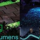 Fotoluminescentes Jardim
