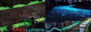 Decoração de Jardim Fotoluminescente